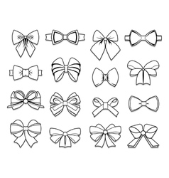 Beautiful bows elements collection vector