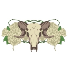 Skull sheep and flowers roses vector
