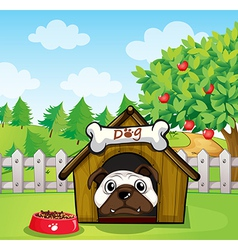 A dog inside a dog house vector image vector image