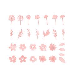decorative flower watercolor design elements vector image
