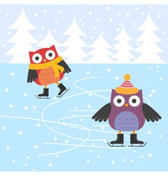 Ice skating cute owls vector