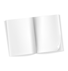 magazine blank vector image vector image