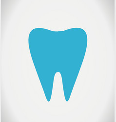 tooth on white vector image vector image