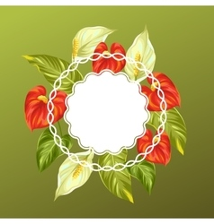 Decorative card with flowers spathiphyllum and vector