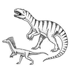 Dinosaurs tyrannosaurus rex velociraptor vector