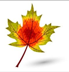 Triangular maple leaf vector