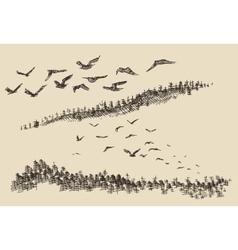 Hand drawn landscape flying birds forest vintage vector