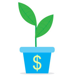 Growth of income sprout in a pot vector