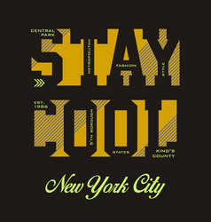 stay cool vector image