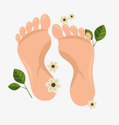 Human foots spa treatment vector