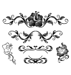 Doodle border and floral patterns vector image