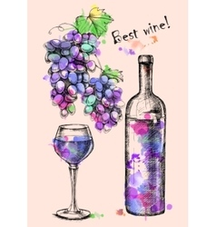 Card of sketch grapes wine bottle for design vector image vector image