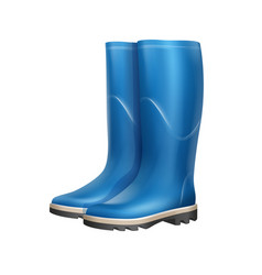 Pair of rubber boots vector