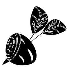 Beetroot slice vegetable food fresh pictogram vector
