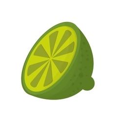 half lime icon vector image vector image