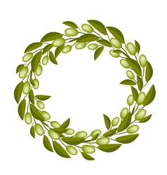 A Beautiful Olive Wreath or Olive Crown vector image vector image