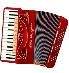 Beautiful accordion vector