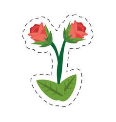 cartoon rose flower image vector image