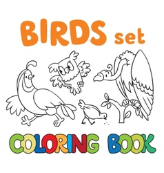 Coloring book with birds vector