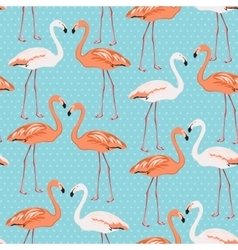 Flamingo couple seamless pattern on blue polka dot vector