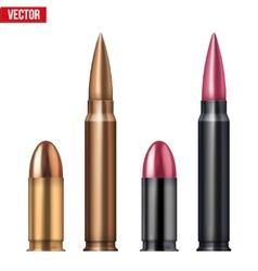 Rifle and revolver Bullets vector image