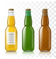 Set realistic glass bottles vector