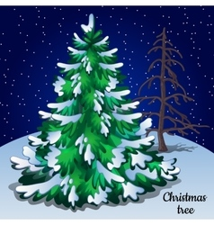 Greeting card with christmas tree closeup vector