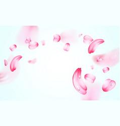 pink sakura fresh falling petals with drops of vector image vector image
