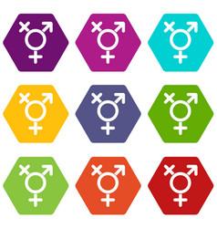 Transgender sign icon set color hexahedron vector