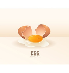 Egg yolk vector image