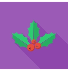 Holly berry flat icon vector