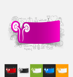 Kidneys paper sticker with hand drawn elements vector