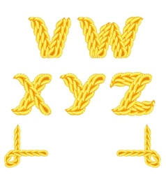 Knitted alphabet v z vector