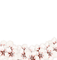 abstract border made in sakura flowers blossom vector image vector image