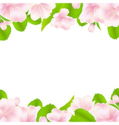 Apple Tree Flowers With Frame vector image vector image
