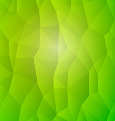 Abstract Nature Detail Structure Green Triangles vector image