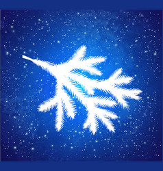 white christmas spruce branch vector image
