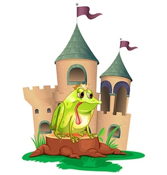 A frog in front a castle vector