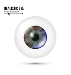 Eye realistic of 3d human vector