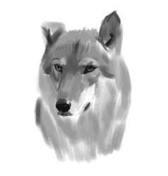 Sketch of a wolf face vector