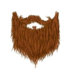 Realistic long brown beard on white vector image