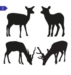 Silhouettes of deer vector
