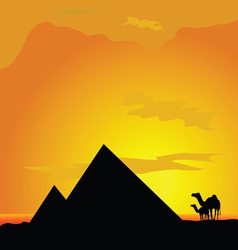 Camels with pyramide in desert vector