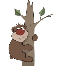 Bear on a tree vector