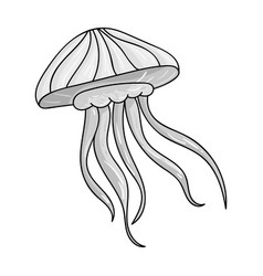 jelly fish icon in monochrome style isolated on vector image