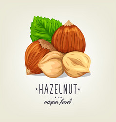colourful hazelnut icon isolated on background vector image vector image