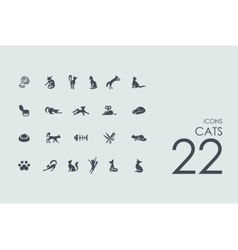Set of cats icons vector