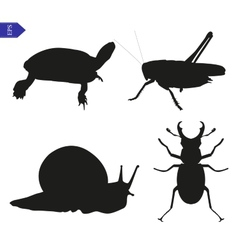 silhouettes of insects and reptiles vector image vector image