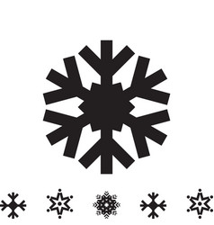 Snowflake icon isolated vector
