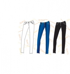 clothes special jeans vector image vector image